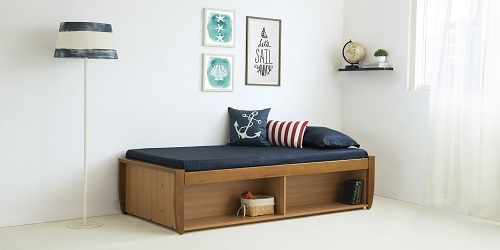 Sofa cum Bed- Bedroom Furniture